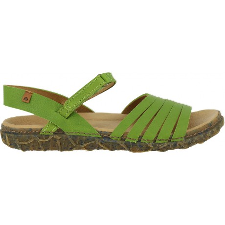 Redes N5501 Lime